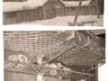 SCJ_Claire Englebert_Classes de neige 1965 (2)
